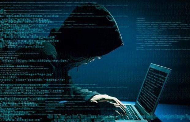 《网络安全法》既保护用户权利又保护国家安全 hinh anh 1
