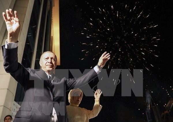 越南国家主席陈大光向土耳其总统致贺电 hinh anh 1