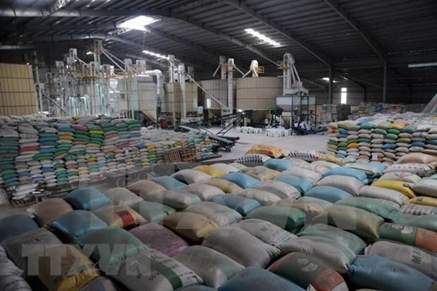 越南大米对马来西亚出口量突增 hinh anh 1