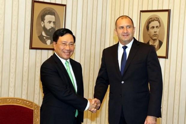 越南政府副总理兼外长范平明对保加利亚进行正式访问 hinh anh 1