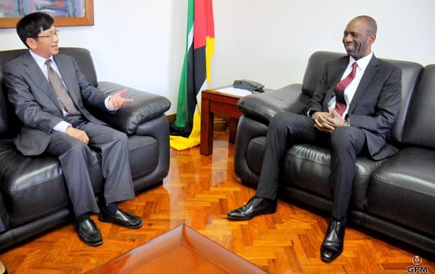 莫桑比克欢迎越南企业前来投资兴业 hinh anh 1
