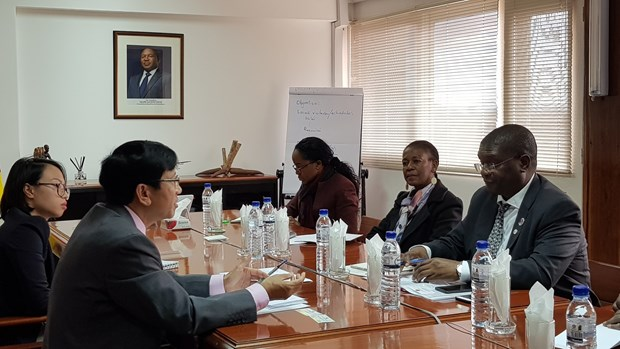 莫桑比克欢迎越南企业前来投资兴业 hinh anh 2