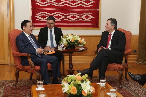 越南政府副总理王廷惠对智利共和国进行正式访问 hinh anh 2