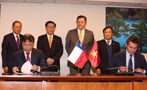 政府副总理王廷惠圆满结束对智利的正式访问 hinh anh 3