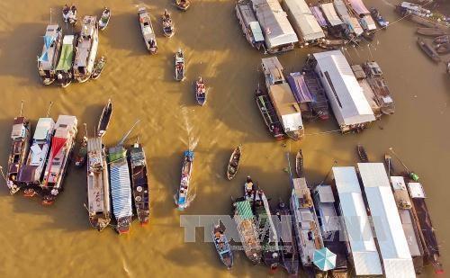 2018年第三届采朗水上市场文化节将举行多项活动 hinh anh 1