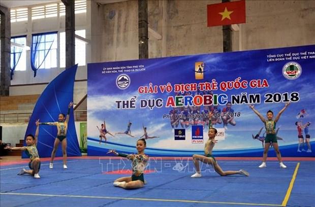 2018年越南国家青年健美操锦标赛在富安省举行 hinh anh 1