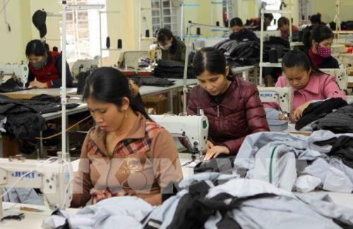 乂安省新成立企业数量年均增长14%至15% hinh anh 1