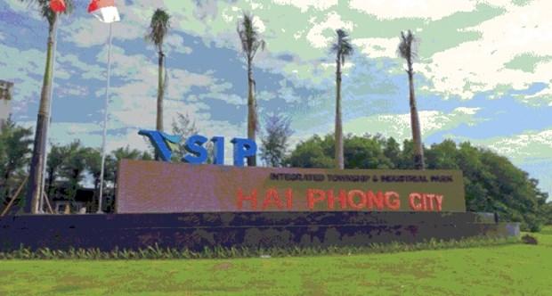 海防市工业园区和经济园区企业为该市工业发展注入强劲动力 hinh anh 1