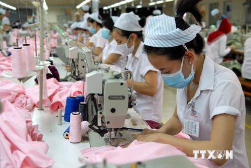 今年第三季度89.6%加工制造企业经营情况持续向好 hinh anh 1