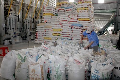 安江省主要产品出口额猛增 hinh anh 1