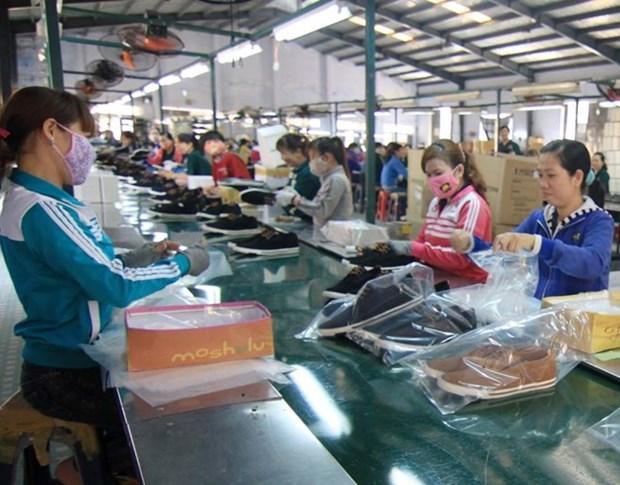 越南皮革制鞋业力争实现至2020年出口额达240-260亿美元的目标 hinh anh 2