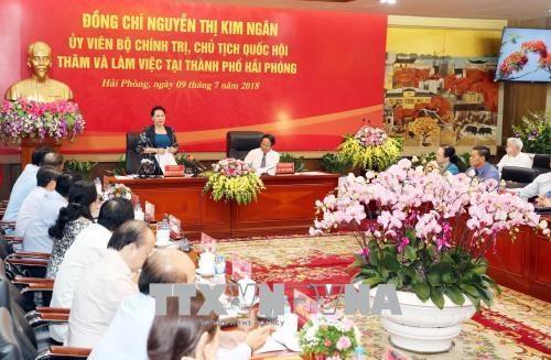 越南国会主席阮氏金银在海防市调研 hinh anh 2