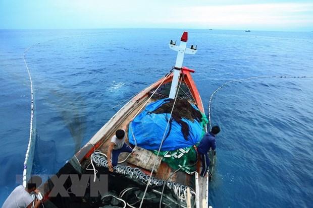 越南力争按照可持续模式发展渔业 hinh anh 1