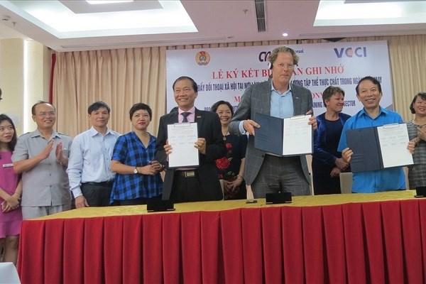 越南与荷兰工会加强合作 hinh anh 1