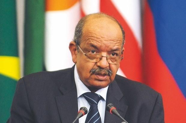 越南与阿尔及利亚进一步加强合作关系 hinh anh 1