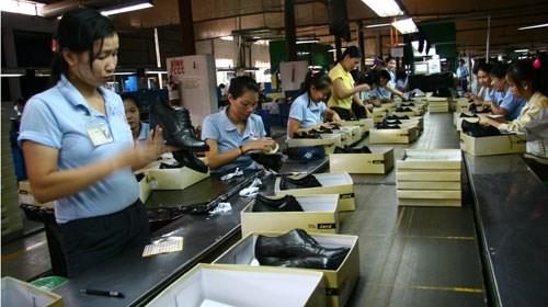 韩国皮鞋企业加大对越投资 hinh anh 1