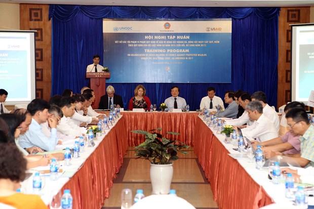 越南加大野生保护动物违法行为打击力度 hinh anh 2