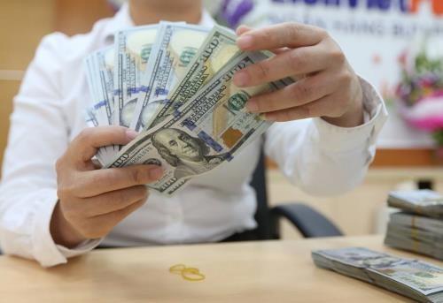 越南国家银行出台政策措施维护外汇市场和汇率的稳定 hinh anh 1