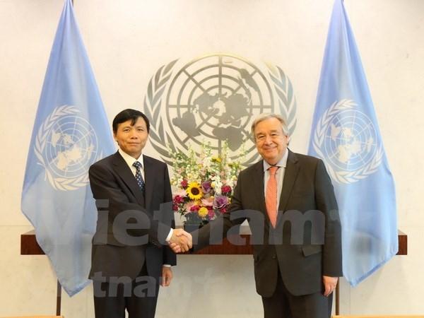联合国秘书长高度评价与越南的合作关系 hinh anh 1