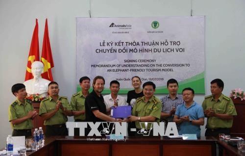 """越南Yok Don国家公园加入全球护象阵营 签署了""""大象友好型旅游""""承诺 hinh anh 1"""