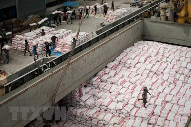 2018年上半年柬埔寨大米出口量同比下降5.9% hinh anh 1