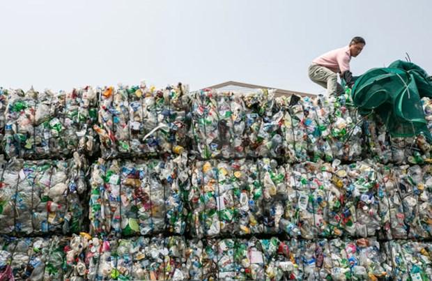 阻止不符合环保要求的废料进入越南 hinh anh 1