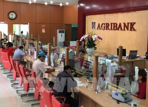 Agribank加大技术投资力度 发展基于先进技术的服务产品 hinh anh 1