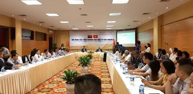 越南与安哥拉促进贸易投资 hinh anh 1