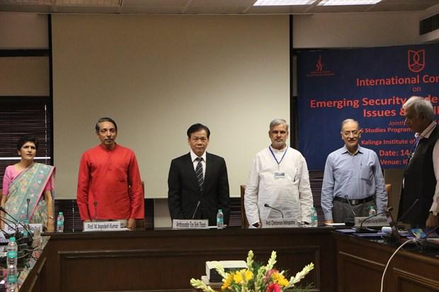 越南驻印大使:东海和印太地区对越南十分重要 hinh anh 1