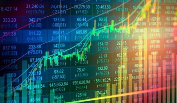 期望越南经济足够强大 让证券市场反弹回升 hinh anh 1