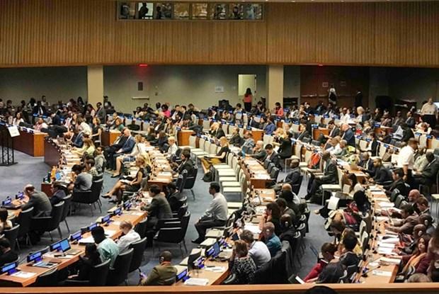 越南在联合国纽约总部发表《国家自愿检视报告》 hinh anh 1