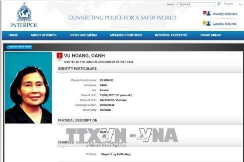 越南公安部对毒品犯罪集团女头目发布国际通缉令 hinh anh 1