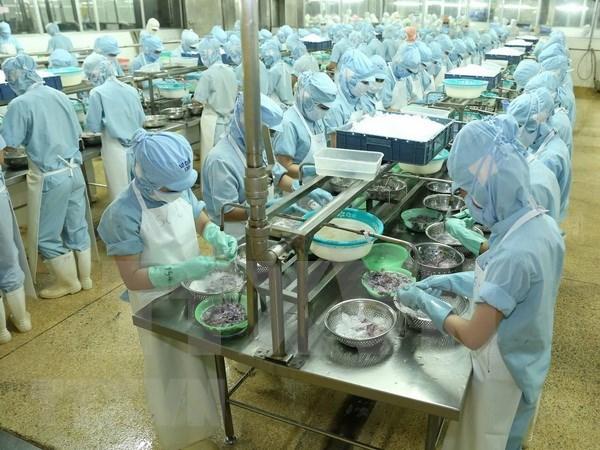 越南工贸部长:各家企业须将竞争压力化为创新和发展的动力 hinh anh 2