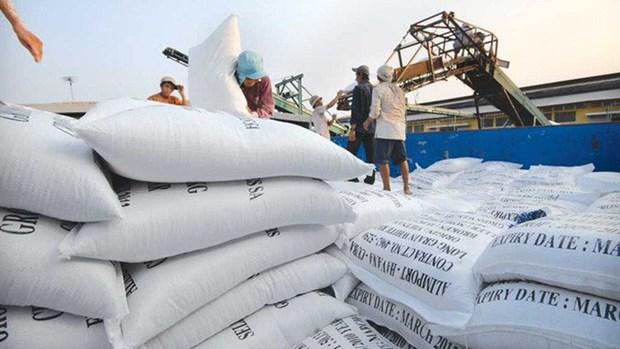 越南大米出口回升下半年继续保持良好发展势头 hinh anh 1