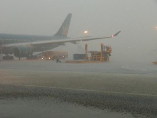各家航空公司因台风调整出发/到达荣市航班计划 hinh anh 1