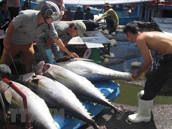 越南渔业着力完成年底目标任务 hinh anh 1