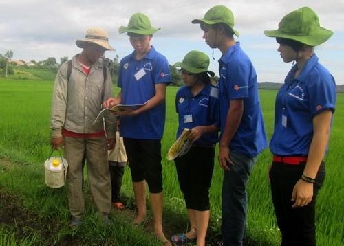 青年科学家与知识分子的志愿精神在农村地区绽放 hinh anh 1