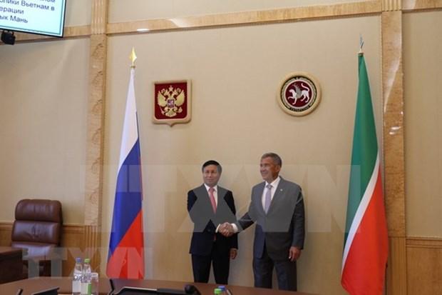 越俄两国深化地方之间的合作关系 hinh anh 1