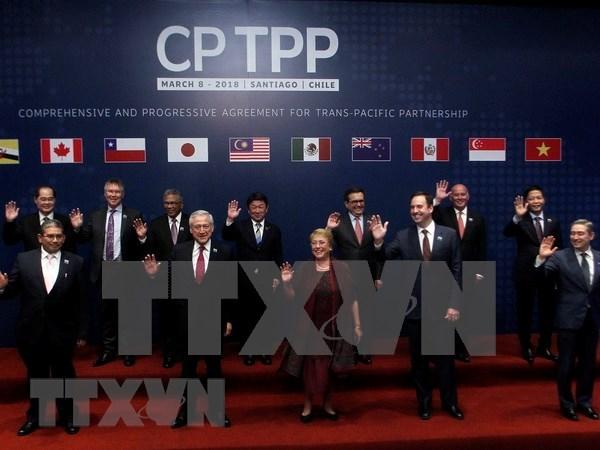CPTPP成员国就2019年协定启动扩容谈判达成一致 hinh anh 1