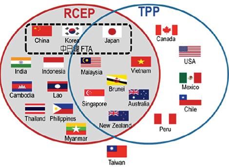 新加坡和印度尼西亚敦促印度加速RCEP谈判 hinh anh 1