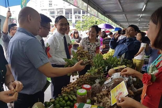 2018年山罗省安全龙眼与农产品周在河内开幕 hinh anh 1