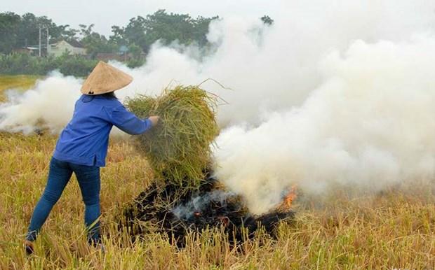 创造绿色能源 减少农村环境污染 hinh anh 1