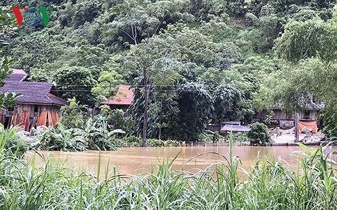 富寿省和山罗省调动一切力量开展暴雨洪水抢险救灾工作 hinh anh 2