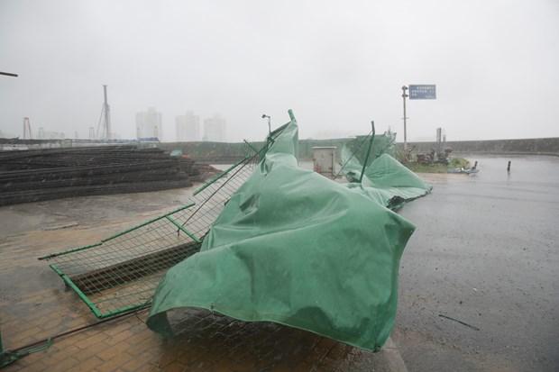 多国受暴雨台风袭击 中国多地交通阻断 菲律宾5人死亡 hinh anh 1