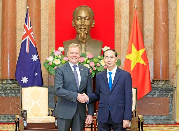 越南国家主席陈大光会见澳大利亚众议院议长托尼•史密斯 hinh anh 2