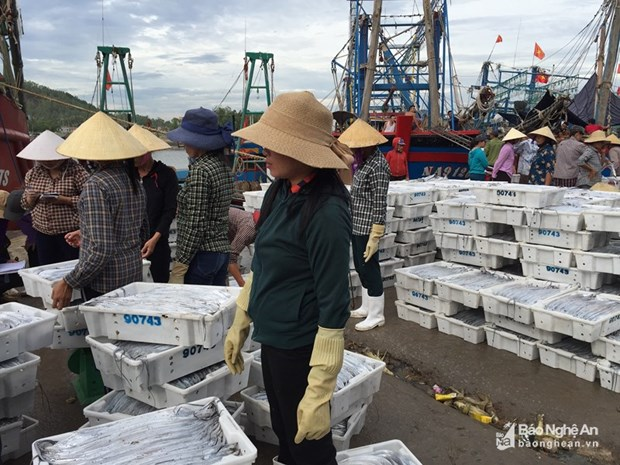 2018年上半年乂安省出口总额同比增长13.58% hinh anh 1
