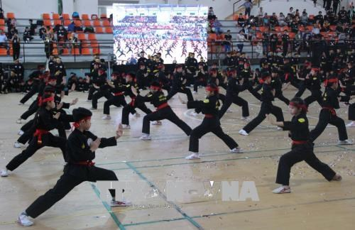 第五届胡志明市国际传统武术节吸引国内外98支武术团参加 hinh anh 1