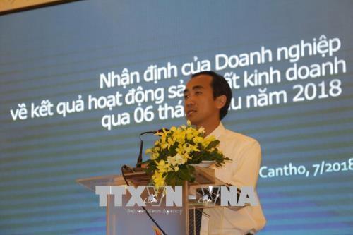 九龙江三角洲各企业抓住CPTPP带来的机遇 助力地方经济社会发展 hinh anh 2