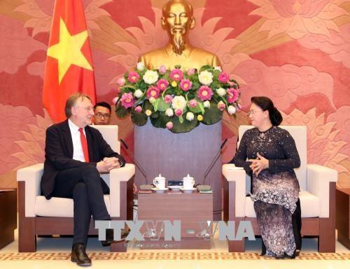 越南国会主席阮氏金银会见欧洲议会贸易委员会主席 hinh anh 1