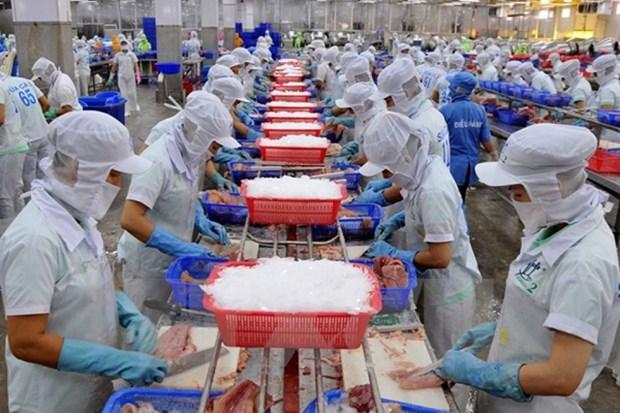 2018年越南水产品出口额难以突破100亿美元大关 hinh anh 1